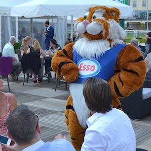 ESSO 145 Deutsches Derby Meeting Hamburg 05-07-14 25 © TIGER-OFFICE.NET